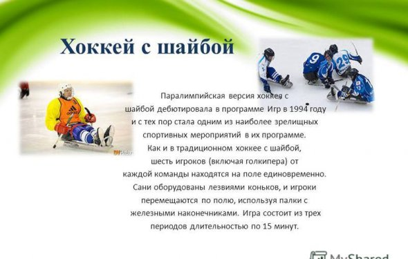 29 Хоккей